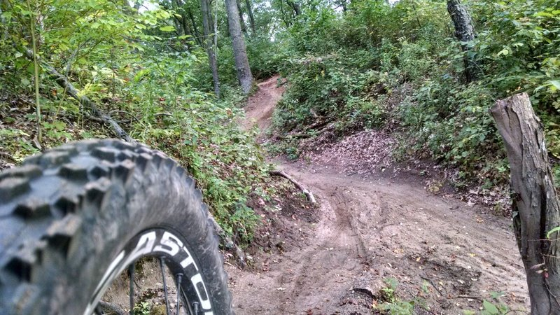 Loose but Fast - Green Trail