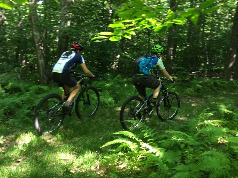 Riding the Redfield Trails