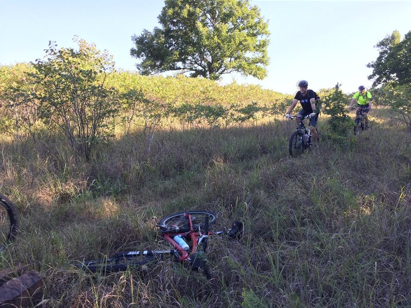 Lots of grass trails on the East side...your other option is rocks in the wooded areas.