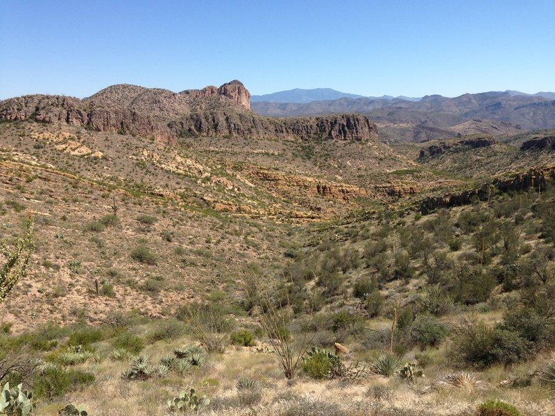 Just a picture of some of the scenery along the way, at about the 10 mile mark.