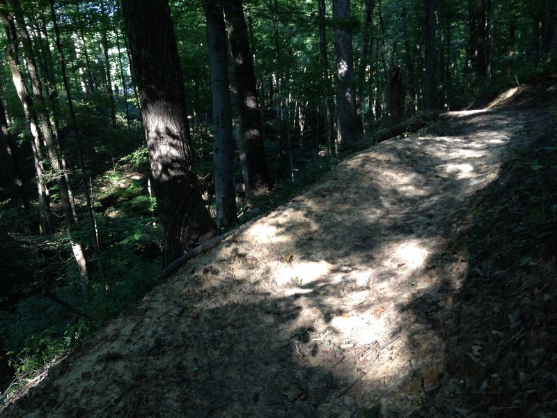 If taking the black trail section in the clockwise direction, this section has good flow to it with some berms to help keep you from rolling down the side of the hill!