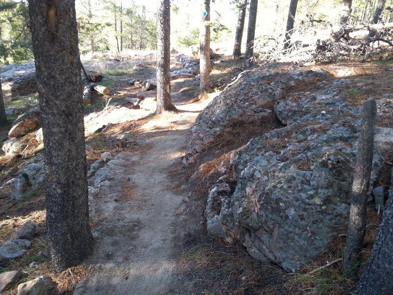 Starting out from the Casper Mountain Trail Center