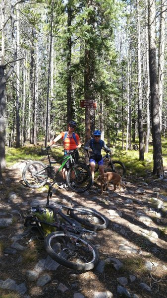 Libby Creek Trail - Lower Trailhead - Junction with Barber Lake Trail