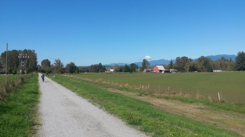 Farms and Mountains as seen from the Pitt River Greenway