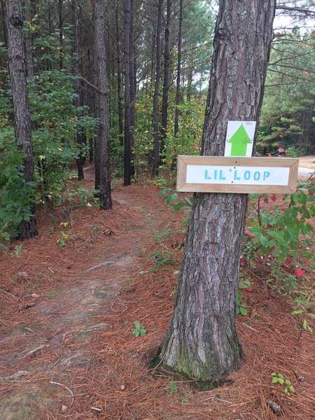 Nice short trail for first timers and kids.