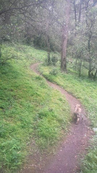 777 trail