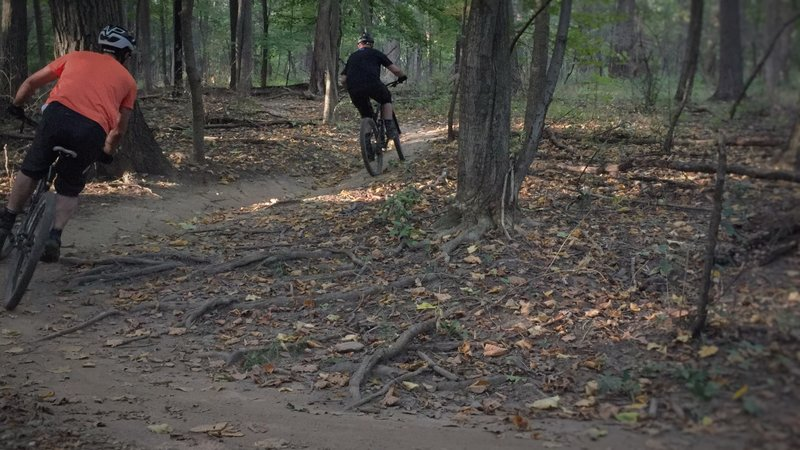 Jason and Ryan tackle a rooty climb.
