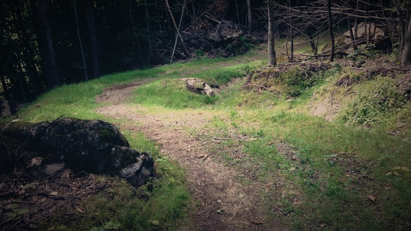Les Orphelins trail