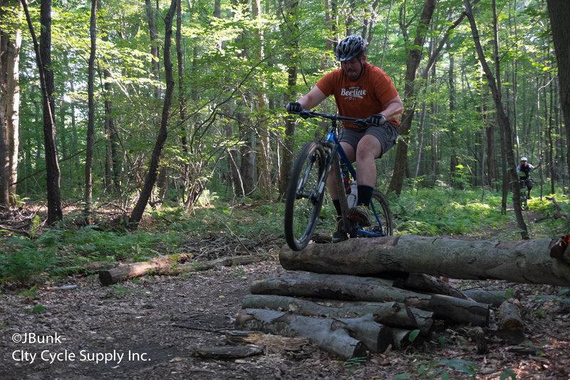 Little skinny log ride.