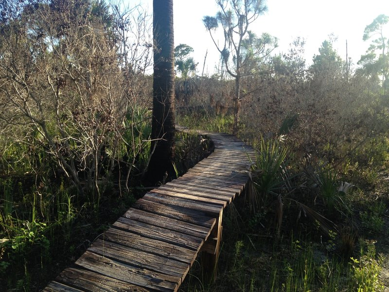 Raised Board Walk at the end of Half Pipe Trail.