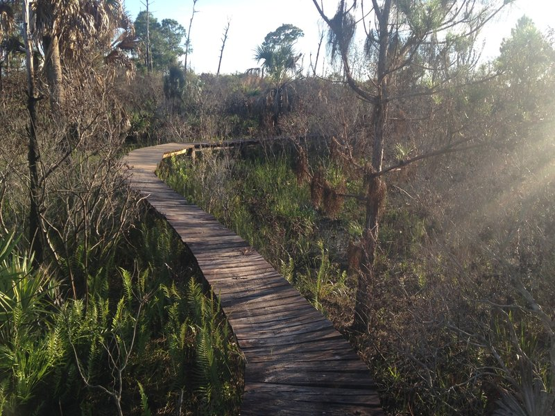 Middle section of the raised Board Walk at the end of Half Pipe Trail.