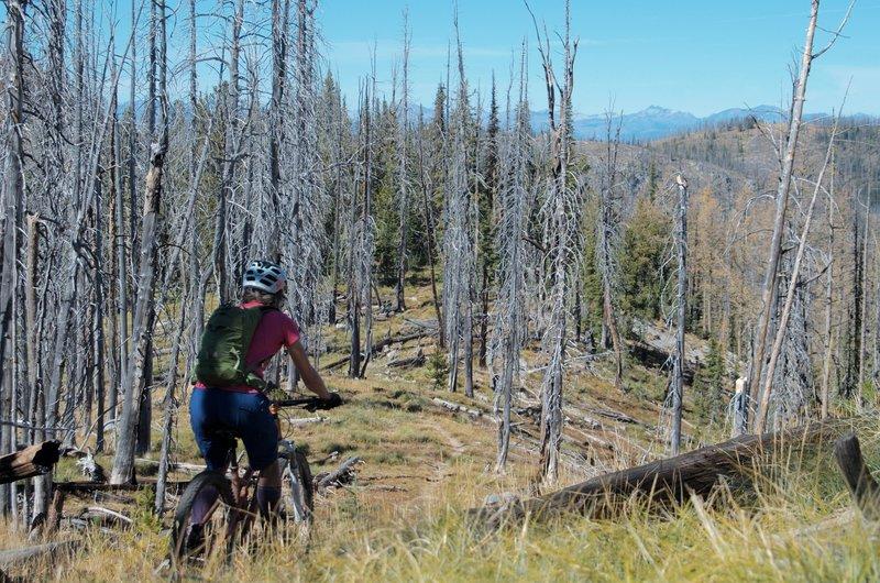 Riding the Ridge.