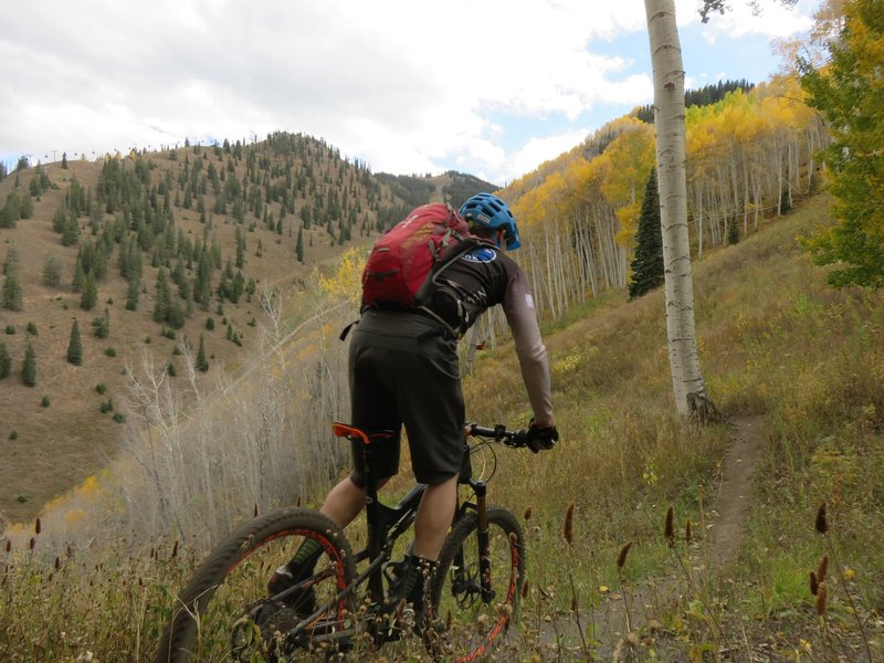 A flowing section of Scotty's Trail between steeper switchback areas. Bell Mountain and the Aspen Mt. Gondola on the left.