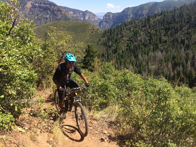 Cruising on the Forest Hollow Trail above Glenwood Canyon.