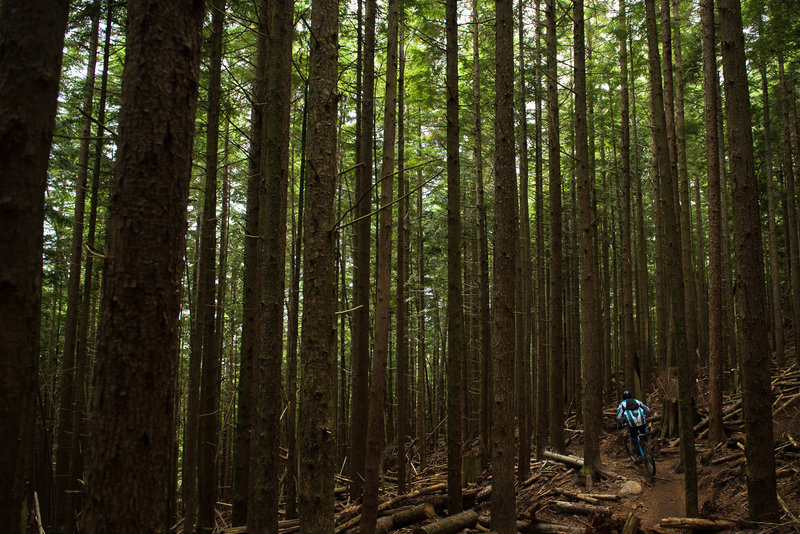 Justin Vance taking his hardtail for a ride on Off The Grid.