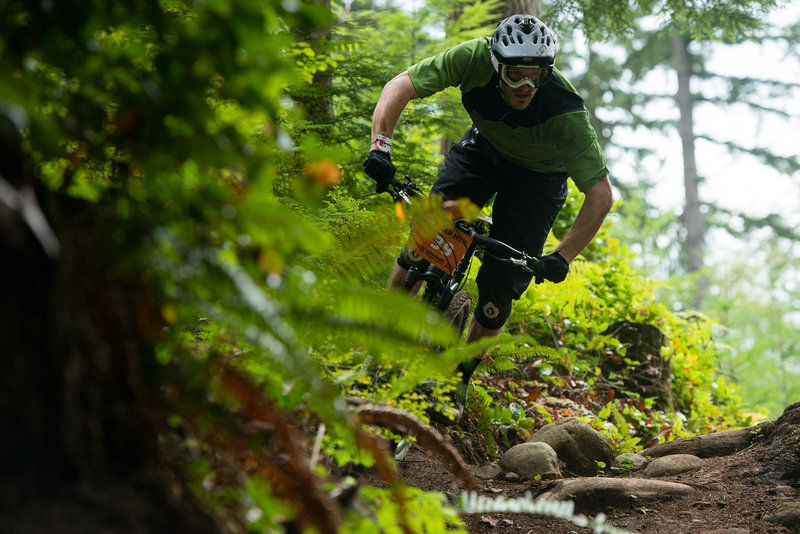 Clinton Fowler riding eyes-up on upper Silent Swamp Trail