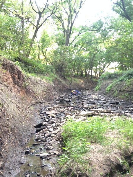 Creek crossings on the Wilderness Park trail