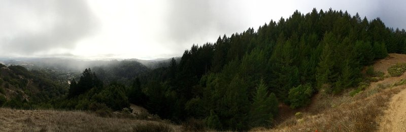 Beautiful, foggy panoramic from the Wagon Wheel Trail.