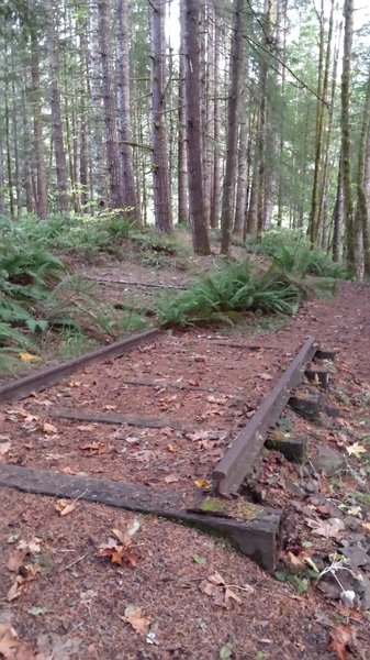 Little snippet of old railroad tracks at the top of the switchbacks on the Visitor Center Loop.