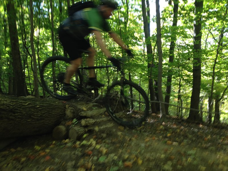 Enjoying the log pile on Kemp Trail