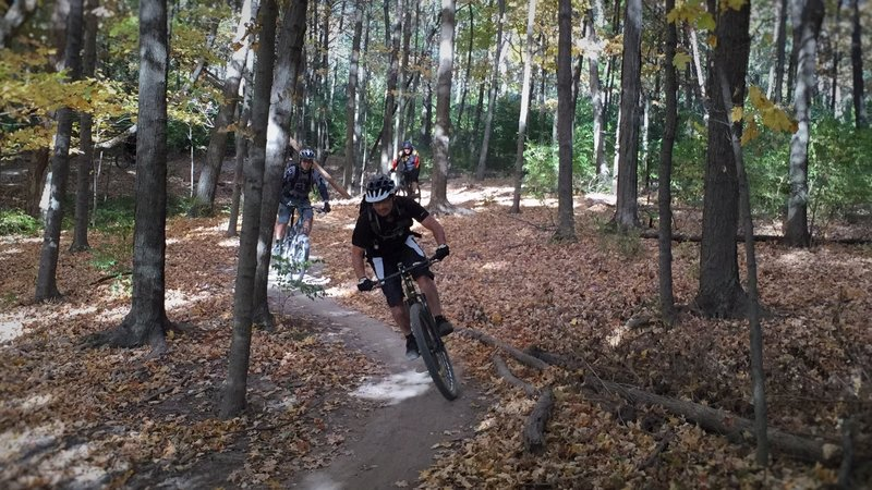 Jason O'Young weaving between the trees on Stonehouse with Mark Morgan and Rick Nestor.
