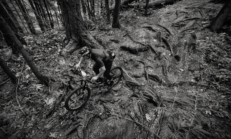 Michael Cunningham tackles a few of the many roots on the Upper Ridge Trail.