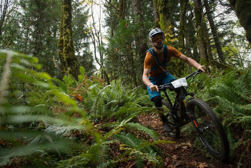 Ian Schmitt racing between the ferns on the Upper Ridge Trail.