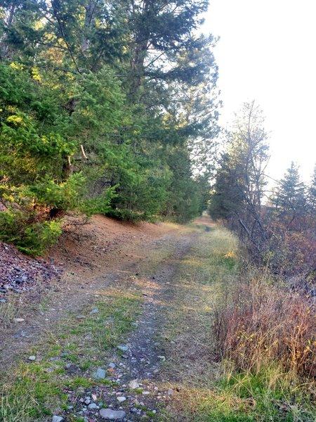 You are riding on the old train tracks. Very cool history, but rocky at times too.
