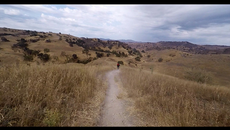 Ireland trail gets a little dusty and bumpy near the bottom, watch for hikers and animals, use a bell or sound indicator, and slow down to merge with the Las Virgenes main trail.
