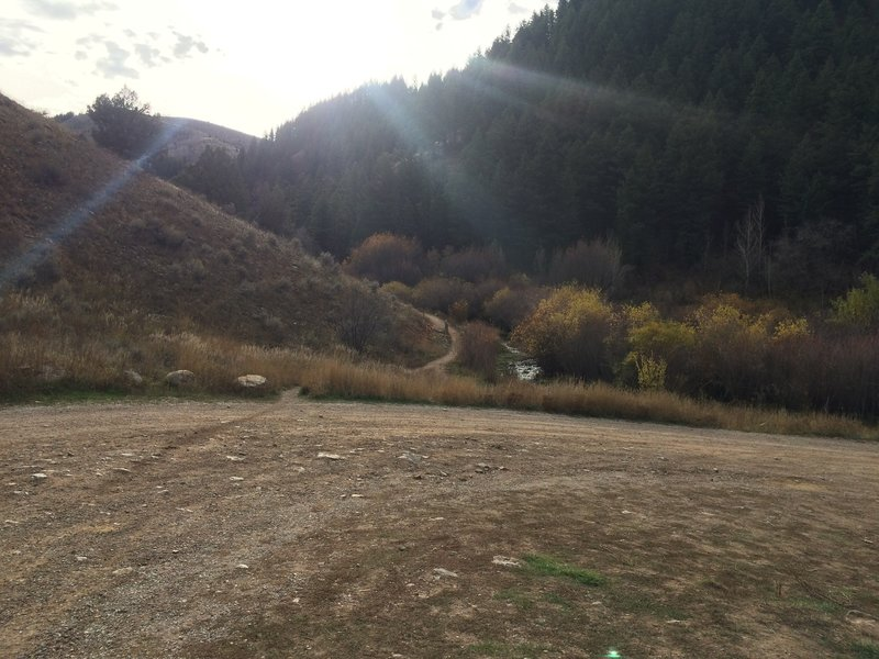 View of trailhead from the parking area.