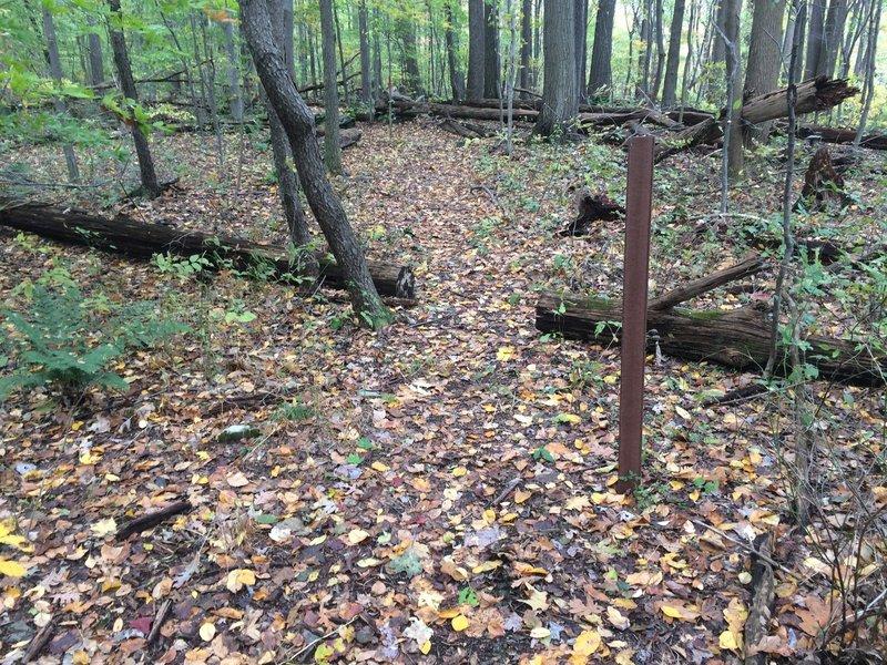 Freeride Trail Entrance