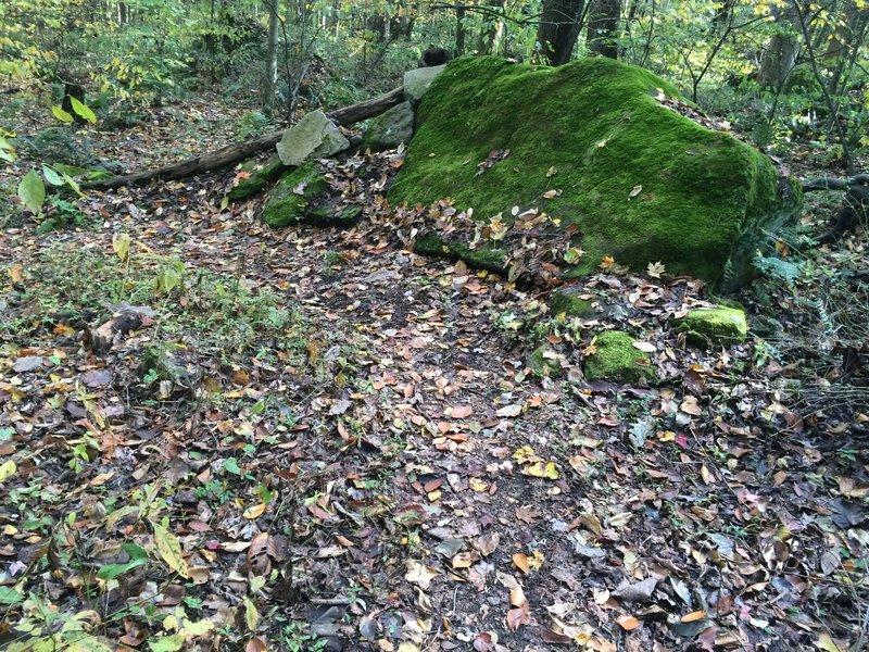 A rock berm on the Freeride Trail.