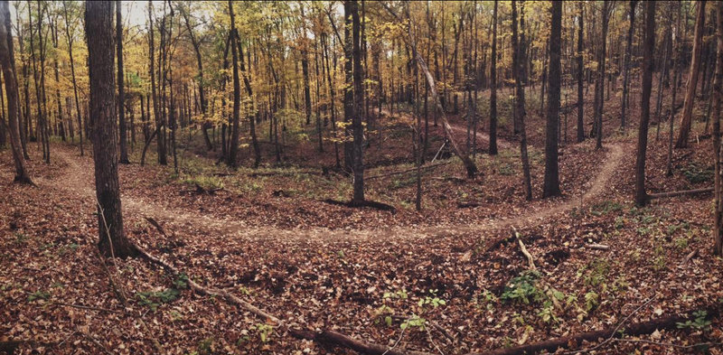Intersection of Chinkapin and Paw Paw in the fall.