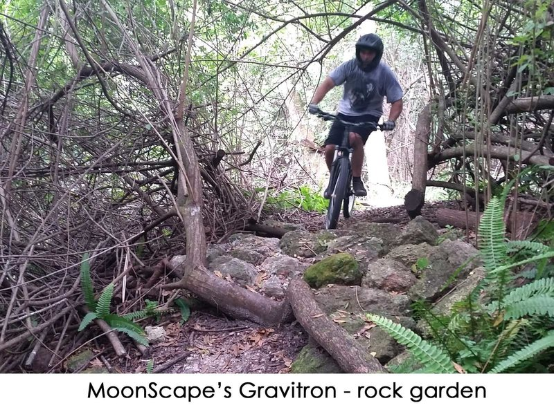 Roots and rocks about on the Gravitron loop of Moonscape.