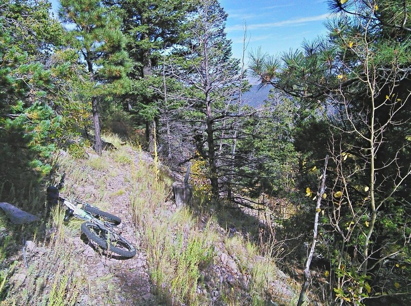 Upper section of the South Baldy Trail is steady gravelly ramp.