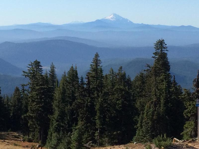 The view from the Timberline trail towards Mt. Jefferson.  Photo by hproctor