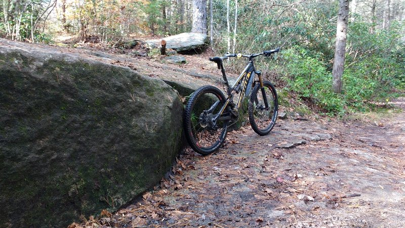 There are some tech features at the intersection of Cat Gap Loop trail sections and Butter Gap trail.