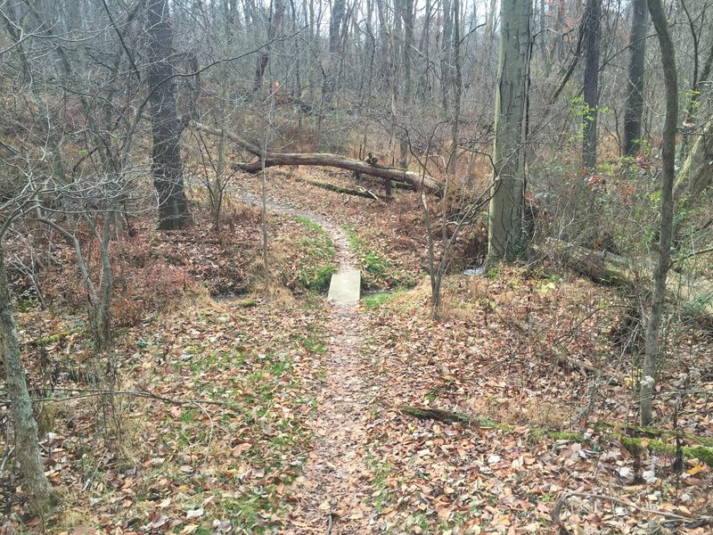 Creek trail bridge at White Oak Park.