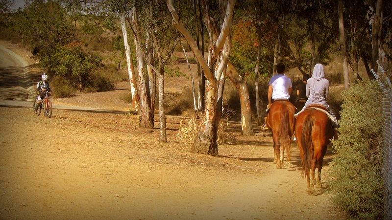 The Marshall Canyon Trail is shared with horseback riders.