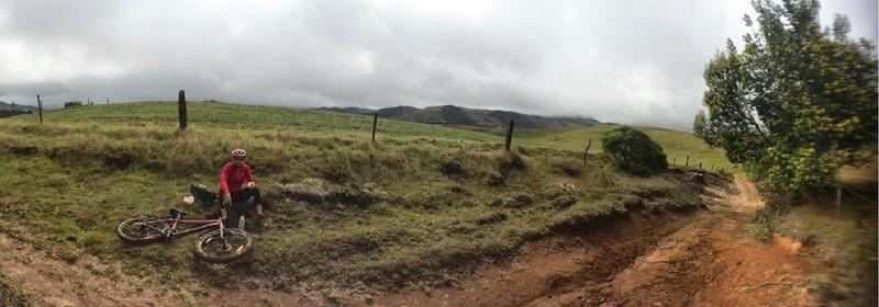 Panoramic riding through a paddock