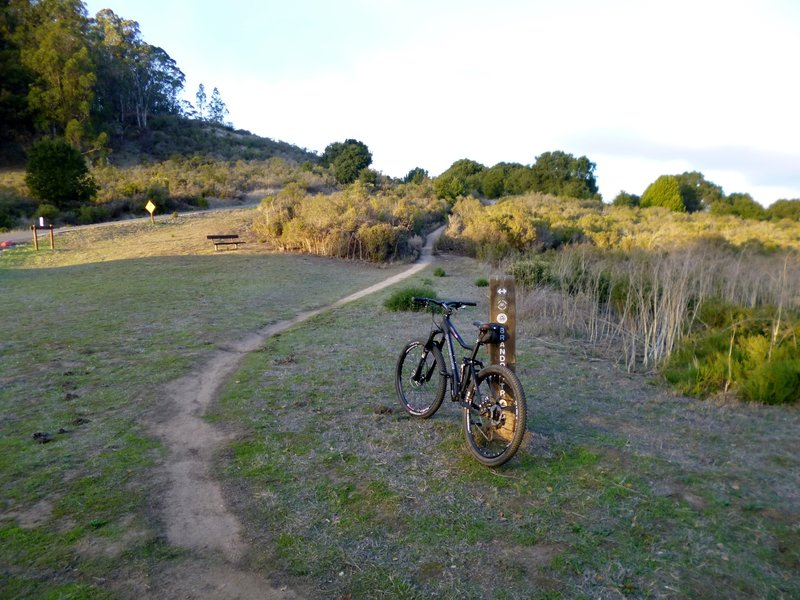 Redtail Trail leadoff from Brandon Trail