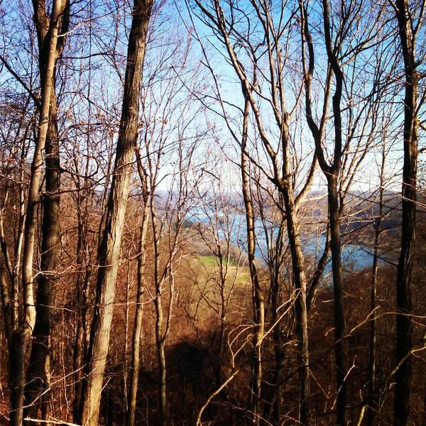 A fall view from the overlook on the Ohio View Trail.