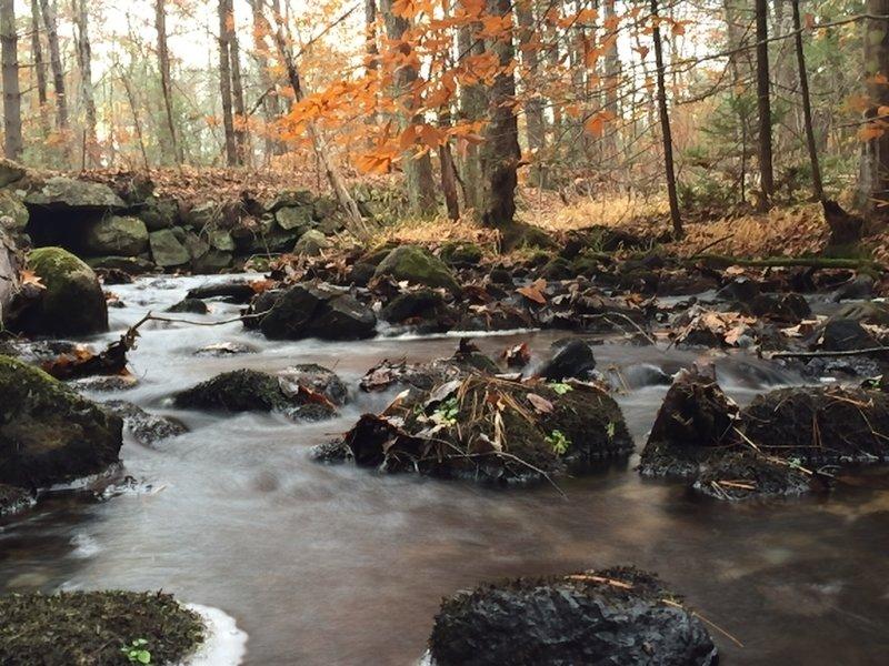 Peaceful little brook near Range Pond.