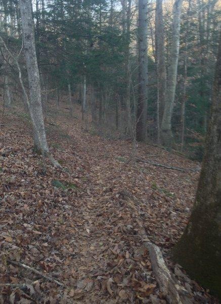 Rocky Ridge Trail, Little Creek Park, South Charleston, WV.  Nov. 2015