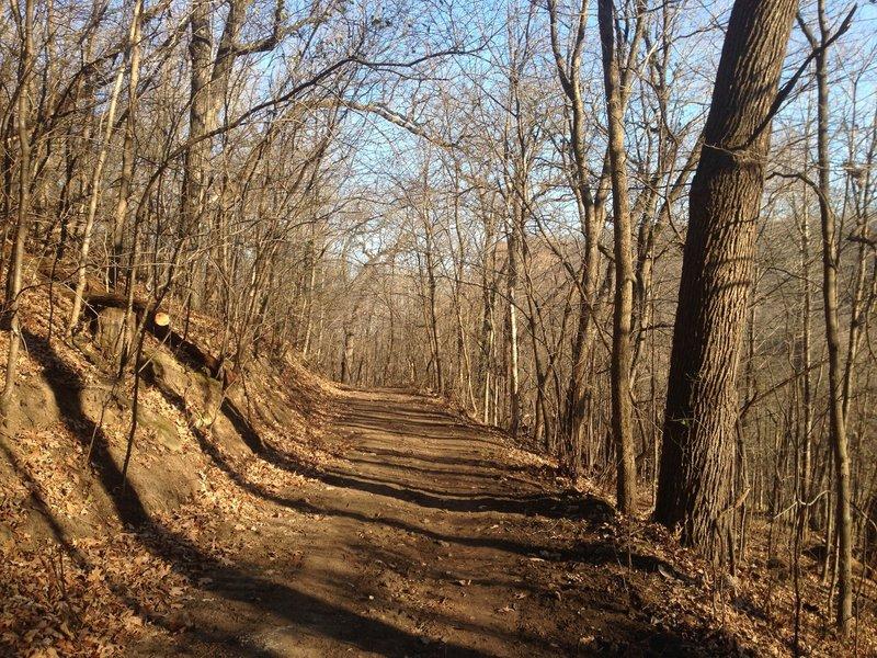 Descending the Lowe Rollers loop.  Lots of trail work (photo 11/24/15) - now a wide road. Fast!