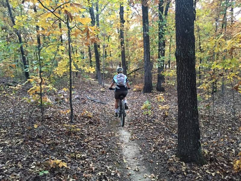 Tanya Lercher enjoying the fall colors on the Yellow Trail.