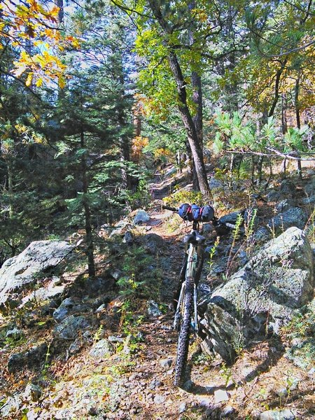 In the middle section of the Copper Canyon Trail, the trail gets chunkier and the cross slope gets steeper.