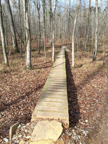 "Semi-skinny 12"" bridge on Rattlesnake Ridge."