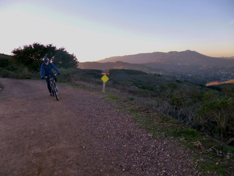 Start of Bobcat Trail with Mount Tamalpais in background.