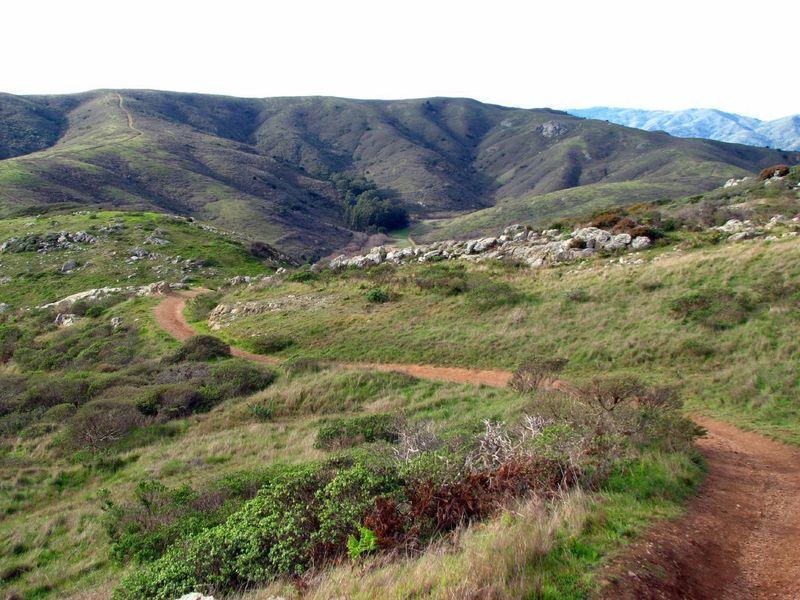Old Spring Trail, Marin Headlands